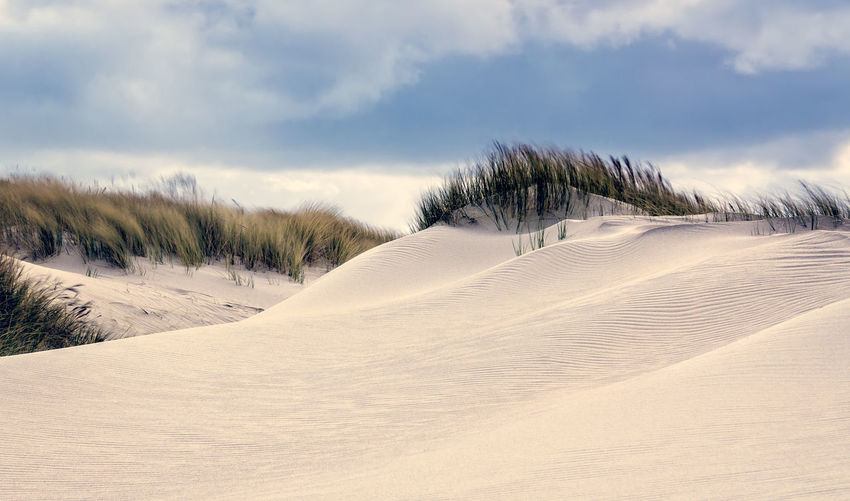 Dunes Relaxing Summer Beach Nature Sky Landscape Background Travel Vacation Marram Grass Outdoors Tranquility Sand Dunes Plant Environment Beauty In Nature No People Sand Dune Cloud - Sky Scenics - Nature Wall Art Dunescape Poster Land Non-urban Scene German Landscape Beach Photography EyeEm Nature Lover Strand
