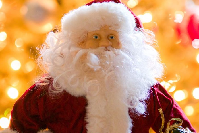 Bring Presents And Gift For Everyone Jolly Til The Season St Nick Holiday Decoration Santa Claus White Beard Santa Is Coming For You Domestic Animals Animal Themes Christmas Mammal Portrait Focus On Foreground Looking At Camera Santa Hat