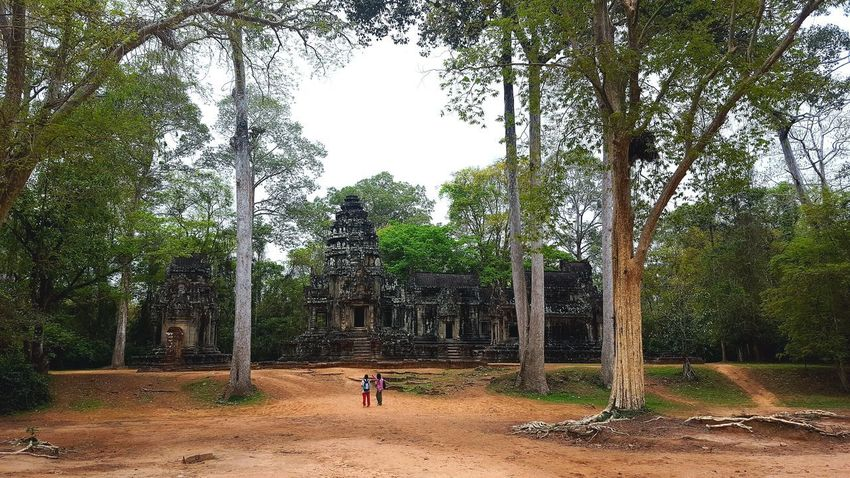 Tree Real People Day Nature Outdoors People Sky The Architect - 2017 EyeEm Awards The Great Outdoors - 2017 EyeEm Awards Building Photography EyeEm Best Shots Travel Destinations Travel Photography Traveling Cambodia Siem Reap Angkor Wat Temple Khmer Khmer Culture Khmer Architecture Travel Life