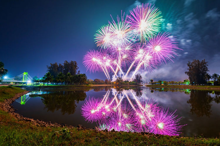 Firework display over lake against sky at night