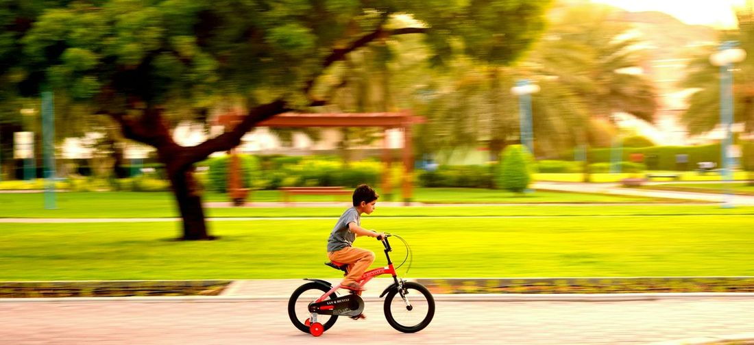 Boyhood Riding Bicycle Boyhood III Life In Motion Evening Light When I Was Young Getting Inspired The Innocence Of A Child