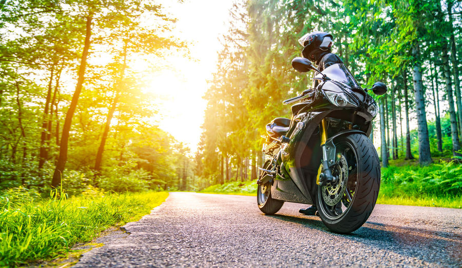 Low angle view of motorcycle parked on road in forest