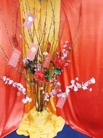 Chinese New Year Decoration Growth Prosperity Yellow And Red Yellow Pink Flower Small Flowers Special Flowers Special Plant Ang Paw Red Ang Pow Flower Sticks Indoors  Red Multi Colored Chinese New Year Flower No People Close-up Fragility