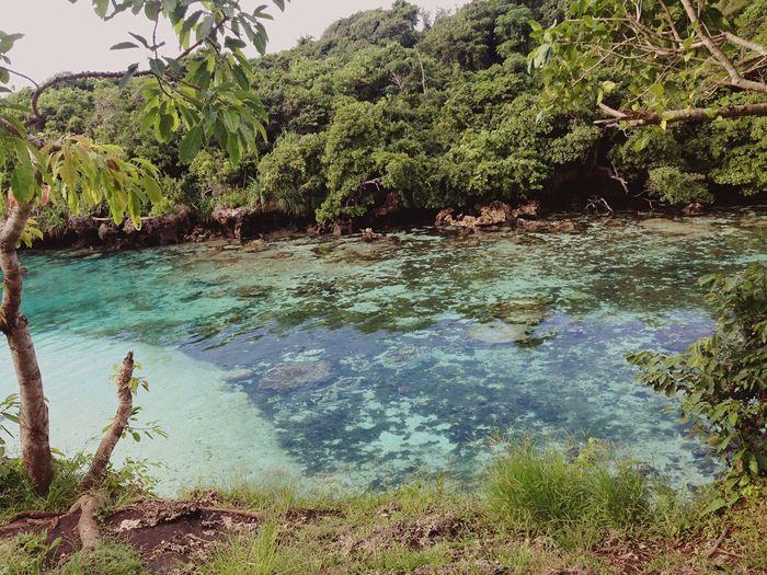 Sub Tropic Wonderfulindonesia Visitindonesia Visitindonesiatimur Sumbaindonesia Nusatenggaratimur Beautiful Nature BeautifulIsland Mustsee Mustvisitplace Mustvisitagain