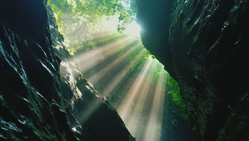 Dehradun Sunlight Forest Nature Beauty In Nature Water Lens Flare Sunrays Majestic Robber's Cave Mesmerizing India