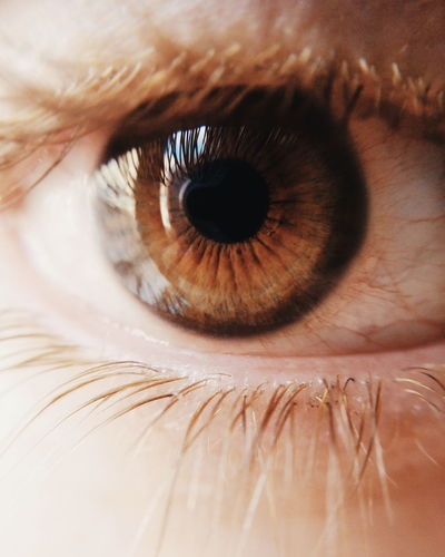 Backgrounds Full Frame Extreme Close-up Human Eye Close-up EyeEm Best Edits Eye4photography  EyeEm Masterclass Folkgood Looking At Camera Posing Part Of Sensory Perception Eyelash Eyesight Detail Person Looking At Camera Vision Eyeball Extreme Close Up Iris - Eye The Week On EyeEm Editor's Picks