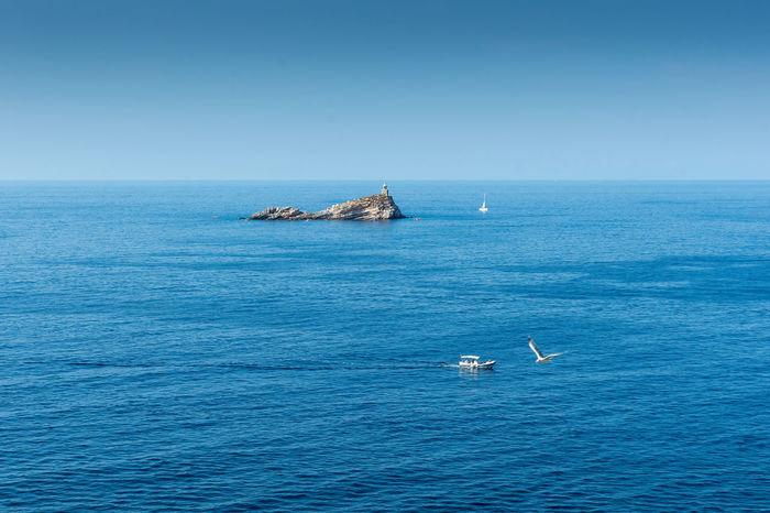 Tranquility 2016 Blue Horizon Over Water Island Isola_d'elba, Sea Italy Nautical Vessel Outdoors Peter_lendvai Photography Phototrip Portoferraio Scenics Sea Toscana Travel