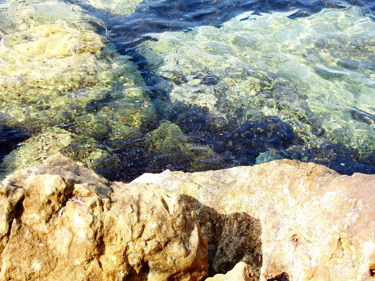 Sea Rocks Sunlight Nature Underwater Water Day Beauty In Nature Outdoors Cittaslow Lefke Cyprus EyeEmNewHere Nature Photography