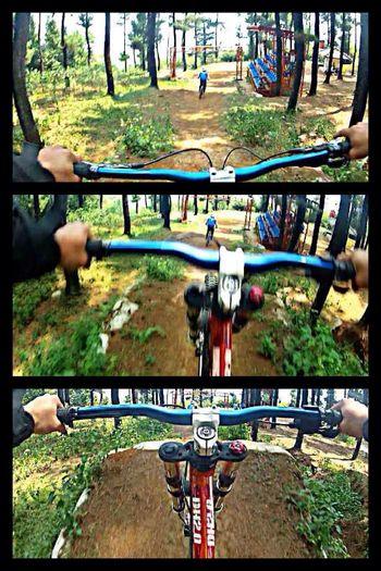 Downhill/ Freeride Having Fun Practice Enjoying Life