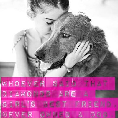 Bestfriend Dog Pet Instamood loveeeyou!!