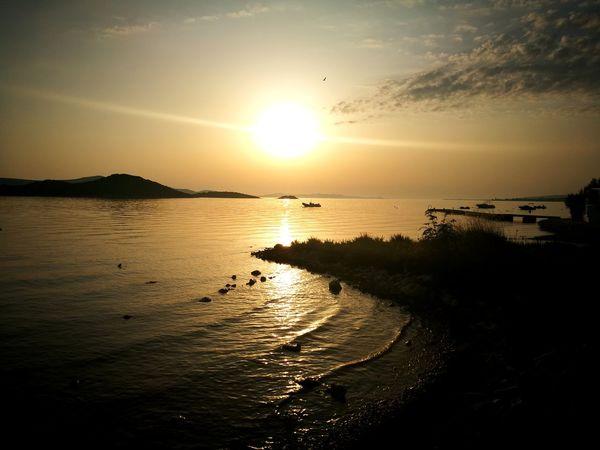 Sunset Beach Horizon Summer Sun Sunlight Beauty Silhouette