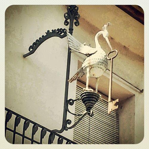 Quina porta obrirà Tremp Pallars Urban Bird key village