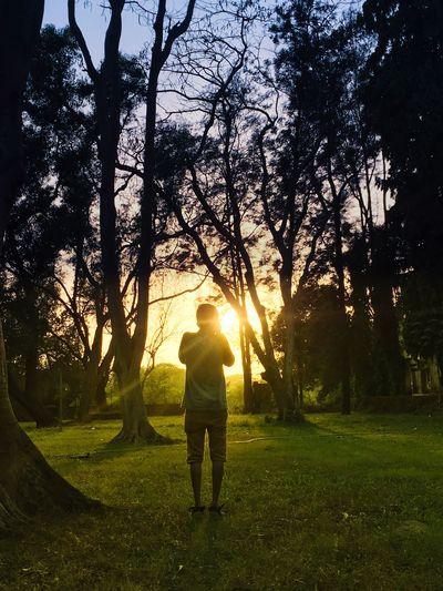 Millennial Pink Sunlight Full Length Lens Flare One Man Only Grass Sunset Nature Sunbeam Outdoors