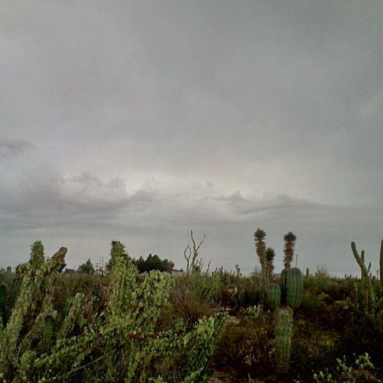 A punto de llover.