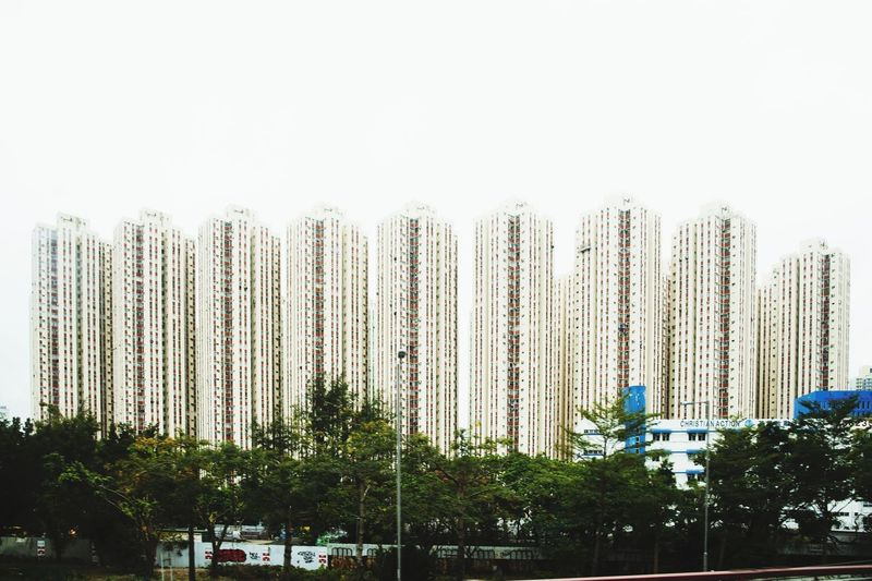 HABITATION in HONG-KONG HongKong Hong Kong Hongkong Photos Hong Kong City Hongkongphotography Nikonphotographer Week On Eyeem WeekOnEyeEm Nikon Nikonphotography Tree City Sky Building Residential Structure Residential Building TOWNSCAPE Architecture