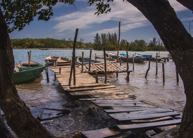Beauty In Nature Cuba Day Gondola - Traditional Boat Harbor Nature Nautical Vessel No People Old Boats Outdoors Sea Sky Tranquil Scene Tree Water