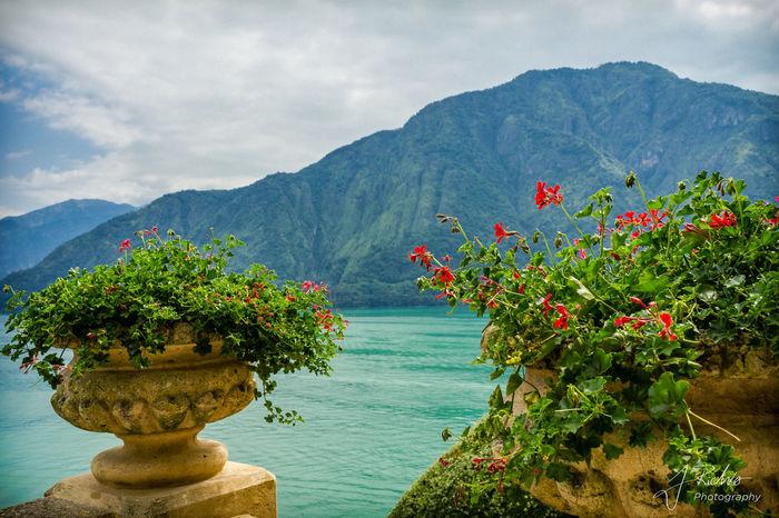 Villa Del Balbianello Mediterranean  Blue Day Lago Di Como Lake Nature No People Outdoors Shooting Location Sky Lago Di Como