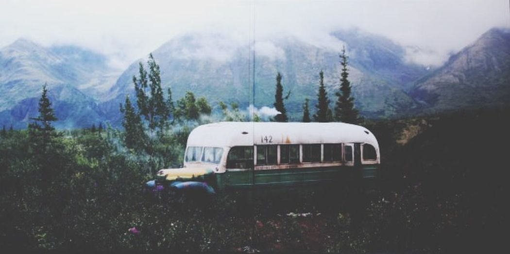 Into the wild Alaska Fairbanks Books