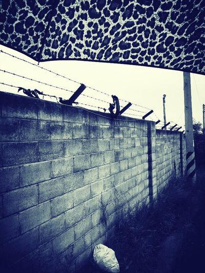 Block Freedom Alone Time Rainy Days