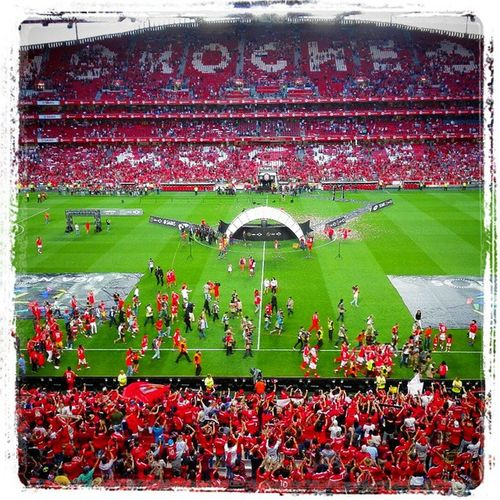 Champions Campeões NosSomosCampeoes Glorioso NiguemParaoBenfica Rumoao35 Huaweionly HuaweiP8 OMeuHuawei Huawei