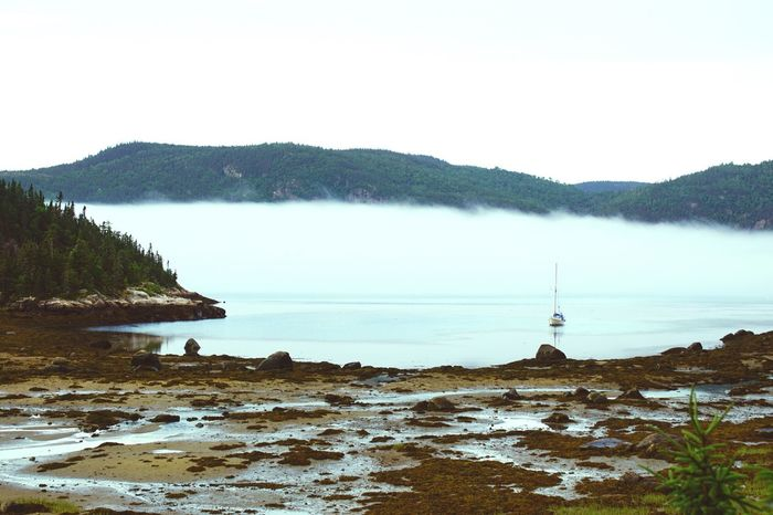 St-Lawrence Seaway Quebec Canada Hidden Gems  Water Mist Misty Morning Misty Sailboat Peace And Quiet