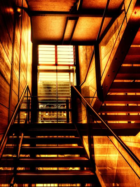 lots of steps to reach a dream...but harder taste better ☀ a pic took in art gallerySteps And Staircases Steps Staircase Railing Indoors  High Angle View Wall - Building Feature The Way Forward Moving Up Modern No People Stairs Ceiling Public Place My Favorite Place First Eyeem Photo Creativity Hdr Snapseed Way Up Way To Backgrounds Window Warm Colors Warm Feeling Color Palette