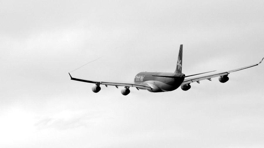 von voyage! Monochrome Airplane Flight ✈ CanonFD  Streamzoofamily