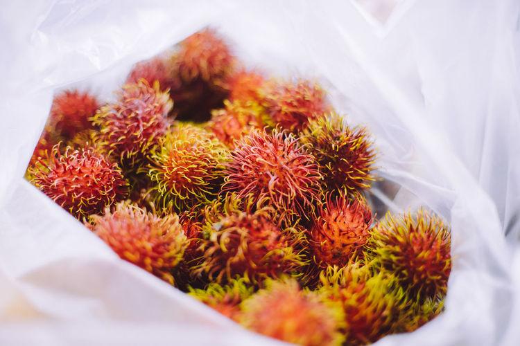 Food Fruit Travel