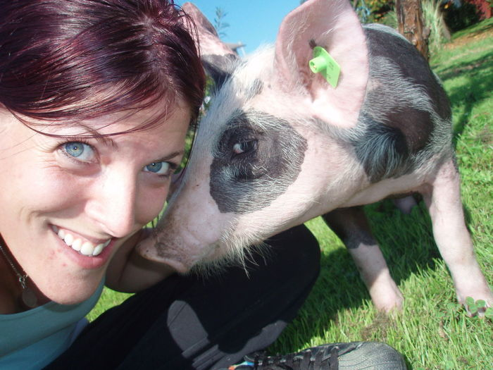 Close-up portrait of smiling young woman with pig on grassy field