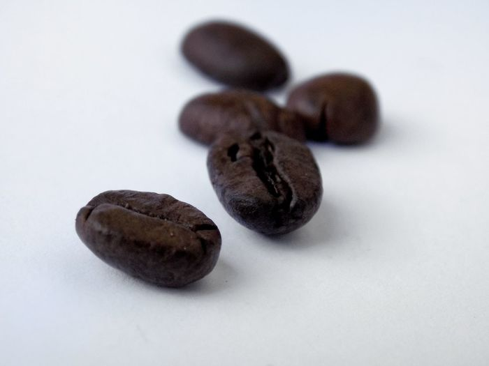 Coffee Coffee - Drink Caffè Bean Roasted Roasted Coffee Bean Coffee Bean Coffee Beans Taking Photos EyeEm Best Shots Taking Photo Taking Pictures Textured  Textures and Surfaces Texture White Background Studio Shot Gray Background Table Still Life Close-up Sweet Food Food And Drink