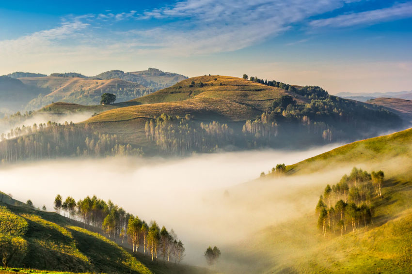 Autumn Green Color Hills Natural Sunlight Travel View Backgrounds Beauty In Nature Dawn Environment Foggy Morning Forest Idyllic Landscape Misty Morning Mountain Nature Outdoors Scenery Scenics - Nature Season  Sky Summer Sunrise