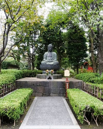 Tree Day Green Color Growth Statue Nature Outdoors Sculpture No People Buda Asakusa,tokyo,japan