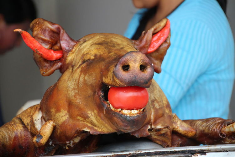 Close-Up Of Roasted Pig In Tray