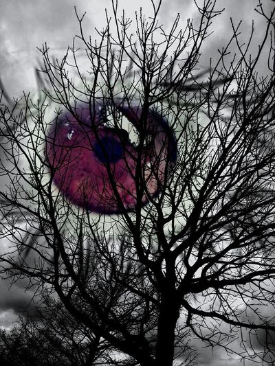 The Innovator Human Eye Human Pupil shown as moon here.. ! edited by me 😉 Black And White Dried Tree Dried Branches Branches Of Tree Dried Trees Dried Tree Against Cloudy Sky Tree My Edit Interesting Edited My Way Pupil Black Showcase June I See You Watching You My Eye My Eyes Are Watching You Purple Purple Eye Showcase July Fine Art Photography The Magic Mission