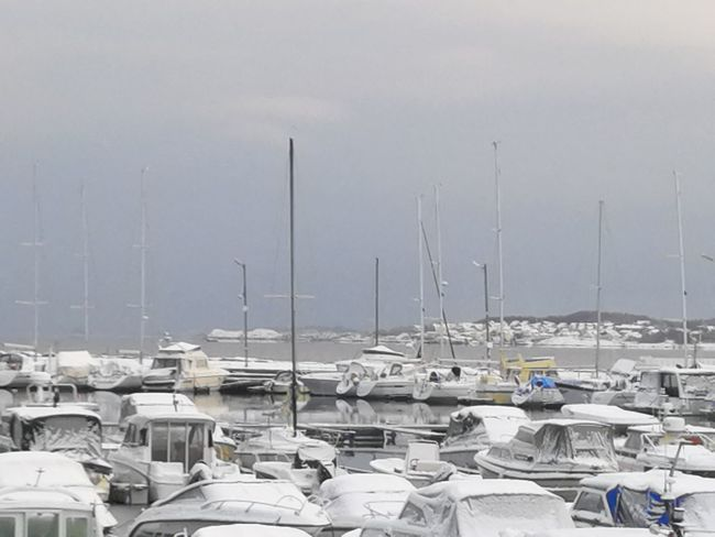 EyeEmNewHere Winter Day Harbor Large Group Of Objects Mast Nautical Vessel No People Outdoors