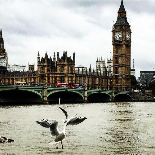 London Architecture Clock Tower River Travel Destinations Water Building Exterior Built Structure
