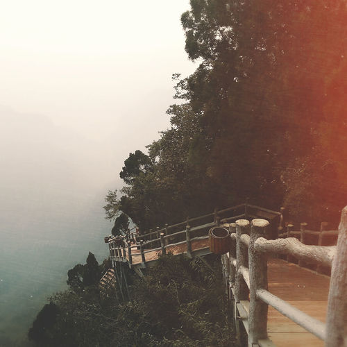 Henan China 云台山 遍插茱萸少一人Tree 茱萸峰 焦作