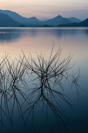 Water Tranquility Beauty In Nature Sky Tranquil Scene Scenics - Nature Sunset Reflection Mountain Lake Nature Mountain Range No People Idyllic Silhouette Plant Non-urban Scene Outdoors Waterfront