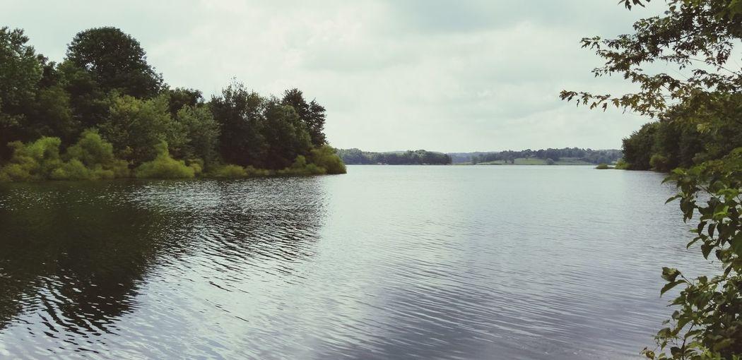 Tree Water Lake Forest Awe Sky Landscape Cloud - Sky