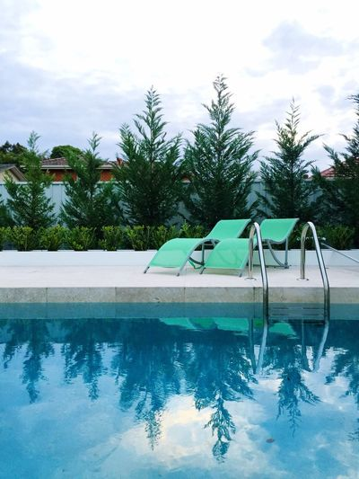 Swimming Pool Cold Temperature Tree No People Water