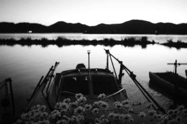 Water Lake Outdoors No People Nature Day Sky Boat Harbour Harbour Life Japan Photography Landscape Beauty In Nature Epson R-D1 Nature Photography EyeEm Best Shots - Black + White Black And White Photography Black & White Harbor Flower Flowers