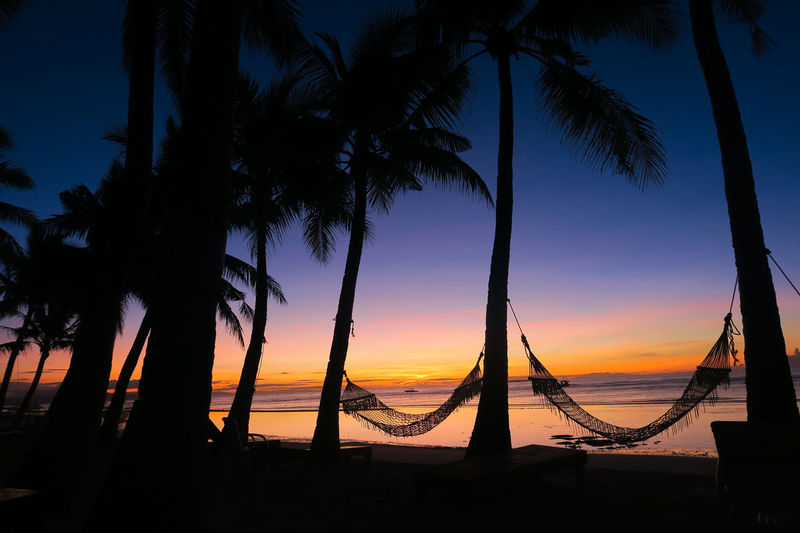 Hammock and coconut tree silhouettes during a stunning island sunrise Beach Hammock Beach Sunrise Beach Sunset Bohol Cebu Coconut Tree Coconuts Culture Filipino Hammock Hammocks Heaven On Earth Heavenly Holiday Island Island Sunset Palawan Paradise Paradise Beach Philippines Resort Silhouette The Philippines Vacation Wonderland