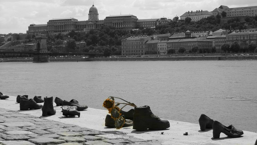 Budapest Water Intolerance Shoes Memories Memorial Past Sunflower Alone Loneliness City Shore Eyemphotography