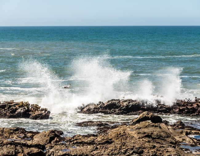 Route 1 Sea Water Motion Horizon Over Water Beauty In Nature Horizon Power Power In Nature Sky Rock Wave Nature Land Rock - Object Scenics - Nature Beach Solid Day No People Breaking Crash Hitting Outdoors Pacific Coast Highway