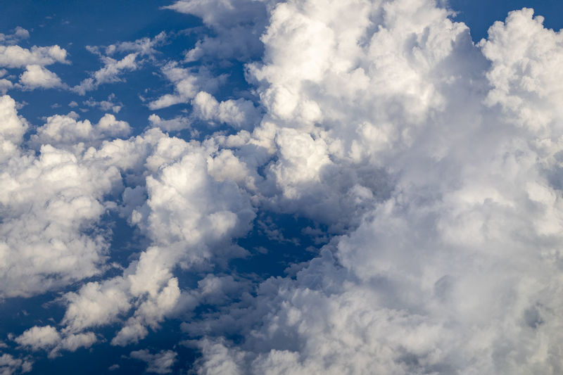 Cloud - Sky Sky Beauty In Nature Scenics - Nature White Color No People Nature Backgrounds Tranquility Low Angle View Cloudscape Tranquil Scene Idyllic Day Full Frame Outdoors Blue Fluffy Environment Non-urban Scene Meteorology Softness