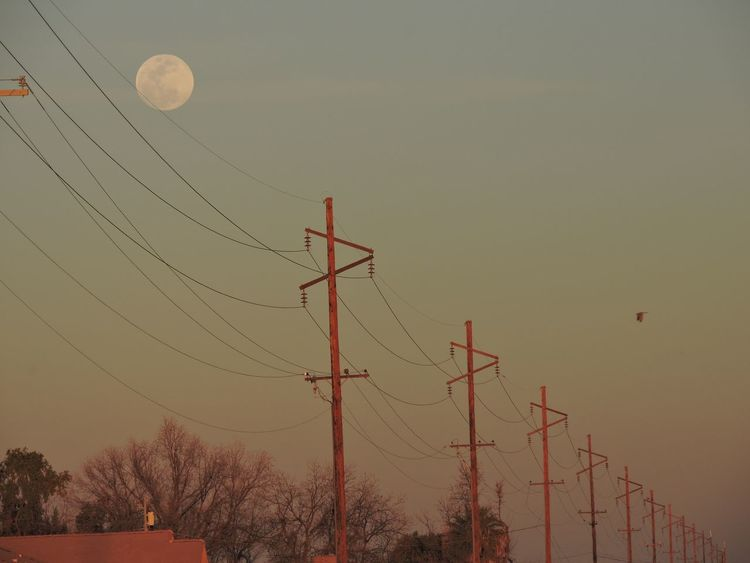 Full moon at sunset Sunset Low Angle View Dusk Technology Silhouette Sky No People Connection Tree Nature Communication Moon Outdoors Electricity Pylon Beauty In Nature Antenna - Aerial Global Communications Telecommunications Equipment Astronomy Day