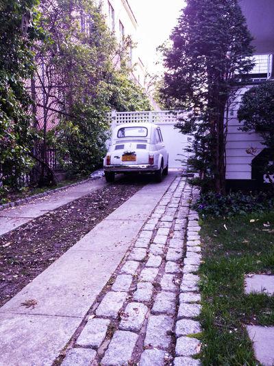 Vintage Set Rahim RahimNoel NYC NY New York Random Vivid Vintage