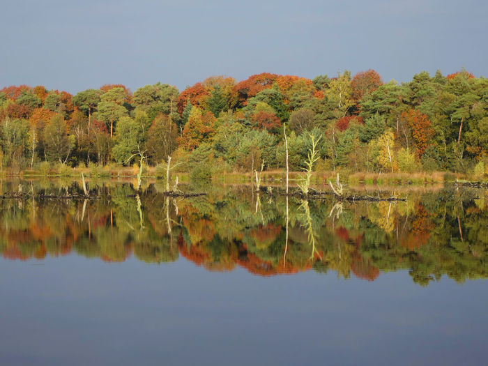 Autumn Autumn Colors Beauty In Nature Calm Hazenputten Nature Reflection Season  Tranquility Waterfront