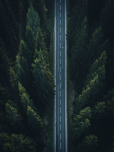 Drone EyeEm Selects EyeEmNewHere EyeEm Best Shots DJI X Eyeem Dronescape Landscape Autobahn Highway Street Aerial Shot Aerial View Aerial Drone  Plant Tree No People Nature Growth Night Outdoors Forest Green Color Motion Low Angle View Land Illuminated Beauty In Nature Lush Foliage Foliage Connection Summer Road Tripping