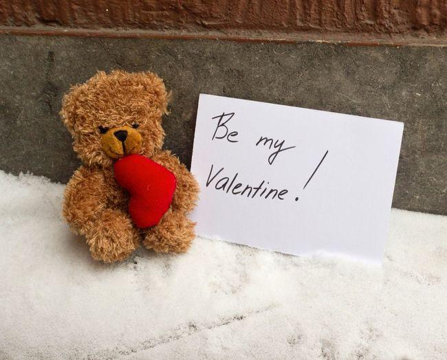 Be my Valentine Valentine Toy Teddy Bear Love